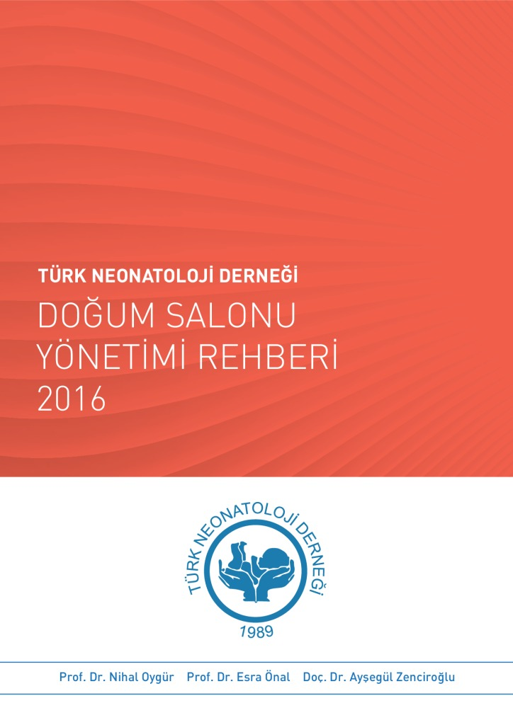 thumbnail of Yüksek-Riskli-Bebek-İzlem-Rehberi-V3