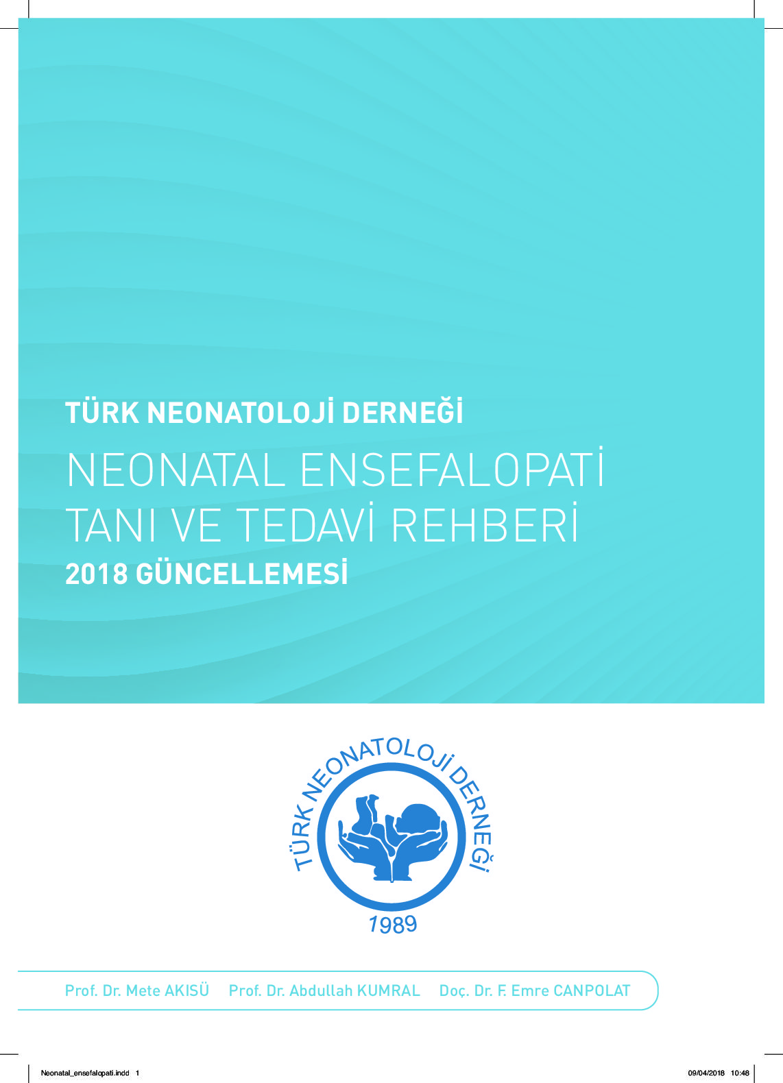 thumbnail of Neonatal Ensefalopati Tanı ve Tedavi Rehberi - 2018